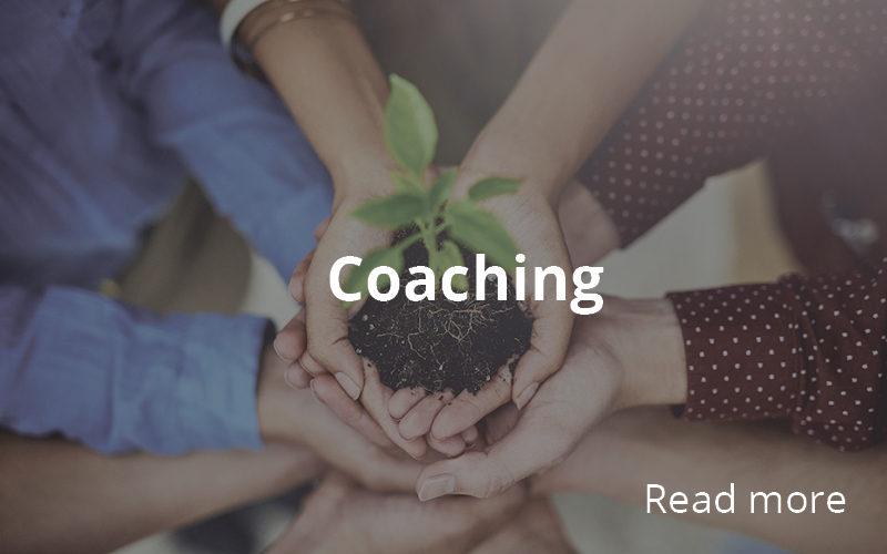https://hashera.ro/wp-content/uploads/2020/05/Coaching-1-800x500.jpg