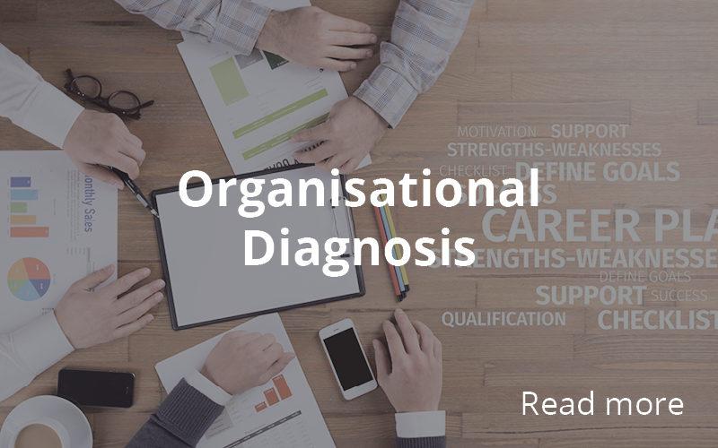 http://hashera.ro/wp-content/uploads/2020/05/Organizational-Diagnosis-800x500.jpg